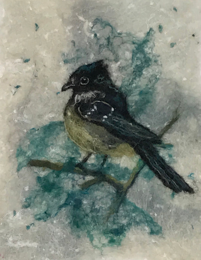 Marie-Louise Gormley:  Coaltit
