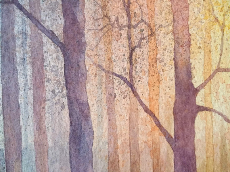 December Glow - An Irish Forest scene in Watercolour by Peter Shaw