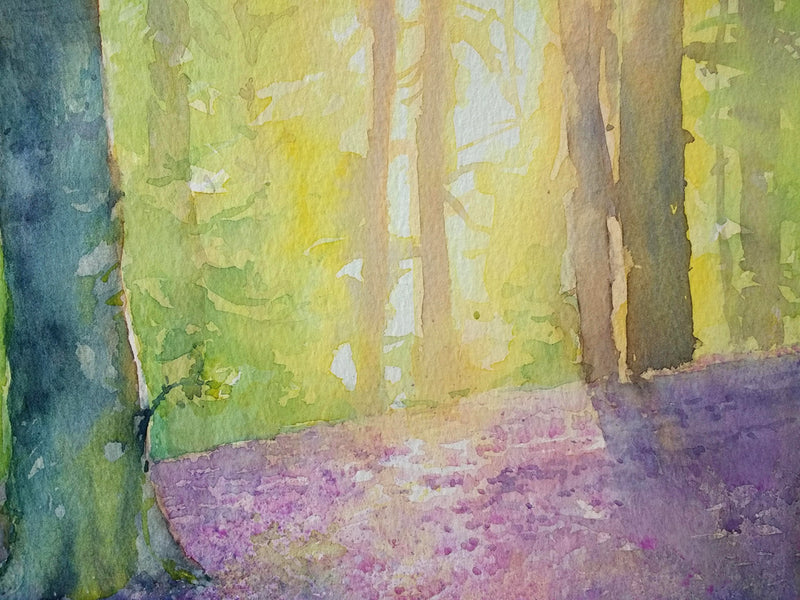Early May - An Irish Forest scene in Watercolour by Peter Shaw