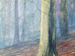 The Beeches- An Irish Forest scene in Watercolour by Peter Shaw