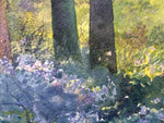 Wild Garlic - An Irish Forest scene in Watercolour by Peter Shaw