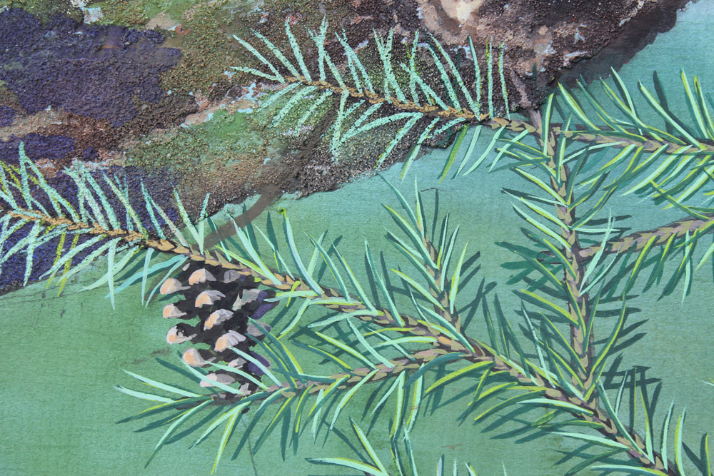 Red Squirrels in Ballycastle Forest - Gouache painting by Robert Spotten