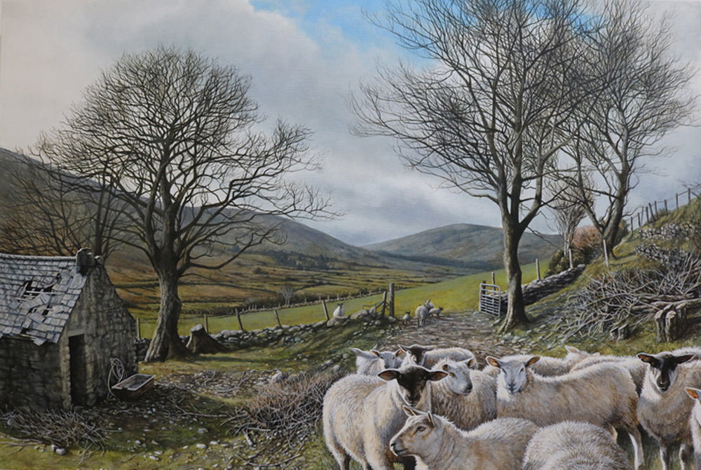 A truly beautiful acrylic of a typical Irish landscape: Sheep in the foreground looking at the viewer, an old abandoned farm house with broken roof slate tiles, a few trees and in the background more fields leading up to the top of the hills. The blue sky is piercing rough the clouds.