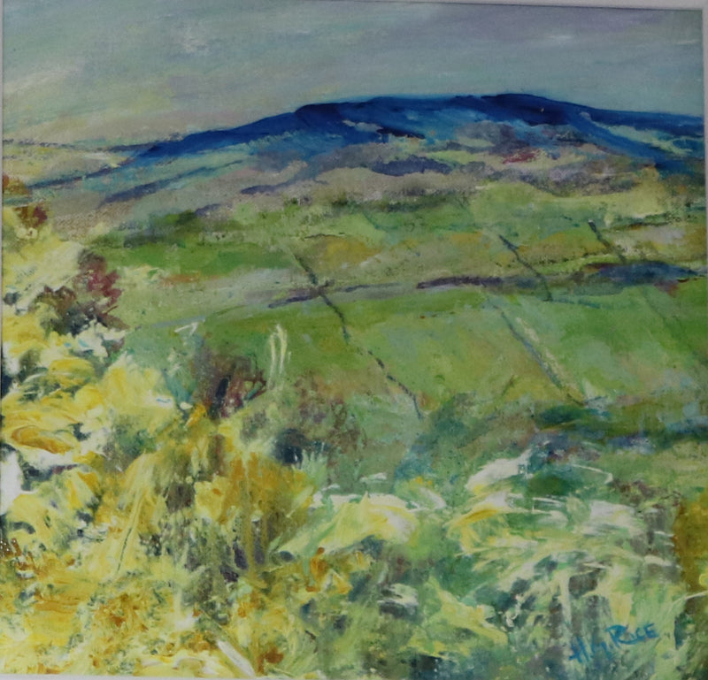 Hugh G. Rice : Whyn Bushes, Knocklayde, Co. Antrim