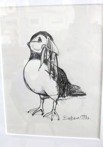 Barbara Allen - Puffin Drawing