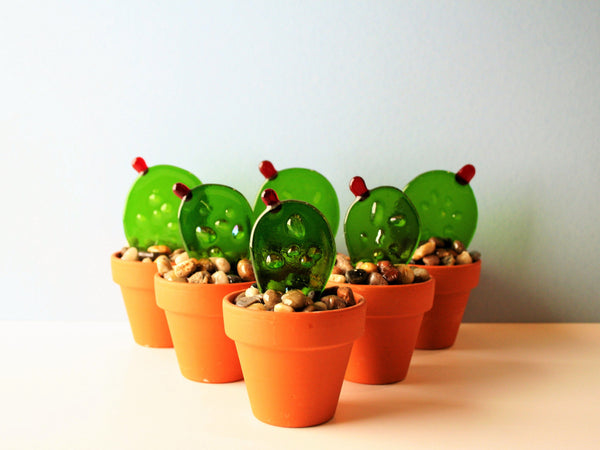 Prickly Pear Glass Cactus
