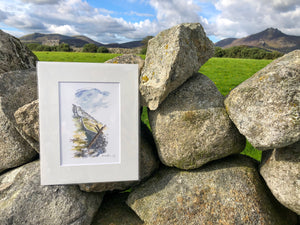 Bearnagh Stile Illustration Print