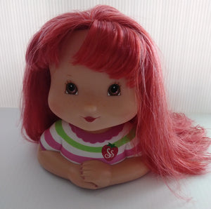 Strawberry Shortcake Styling Head 2007 Playmates Toys-We Got Character