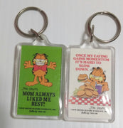 Garfield Keychains lot of 2-We Got Character