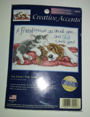 Creative Accents Counted Cross Stitch Kit True Friend - We Got Character