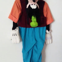 Disney Catalog Goofy Costume-We Got Character