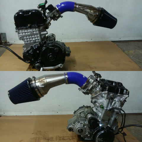 DS450 intake system