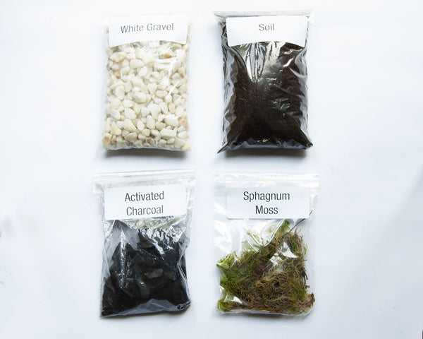 Terrarium Kit - White Gravel Terrarium Kit