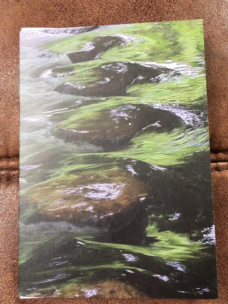 Roger Roberts - River Mole Stepping Stones 4 Greeting Card