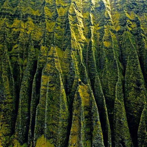 LIK Squared by Peter Lik tropical wall art, affordable wall decor