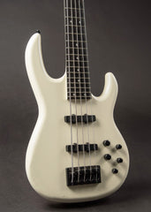 Carvin 5-String Bass