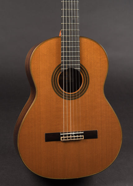 New World Player 650-C 2011