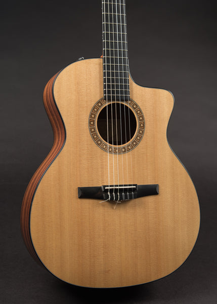 Taylor NS-24ce 2010