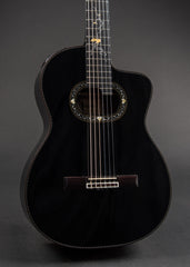 Takamine LTD2012C MICHI 2012