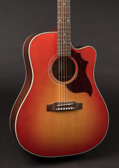 Gibson Hummingbird AG New