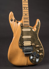 Roger Fisher's LED Strat