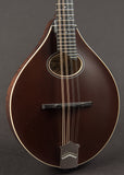 Collings MTO New