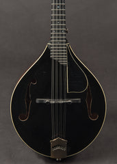 Collings MT 2004