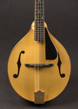 Pava A5 NAMM model New