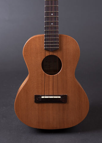 Bill Ford Tenor 2014