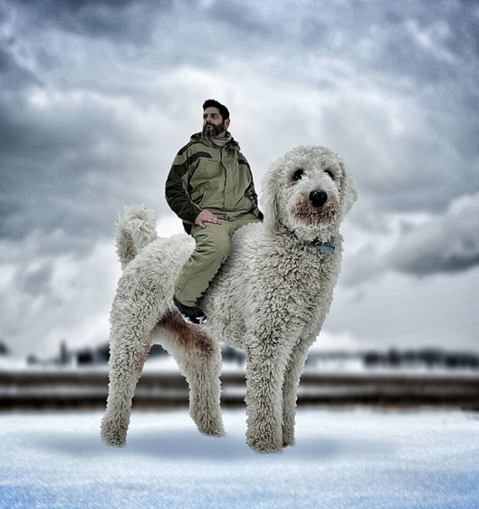 Man's Best Friend: Photoshop + Goldendoodle = EPIC