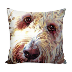 Doodle Eyes Pillow with Insert