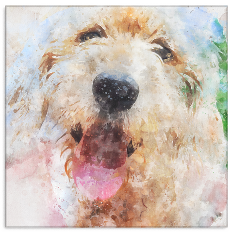 Colorful Watercolor Goldendoodle Labradoodle Wall Canvas