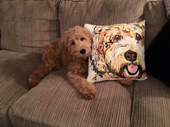 Pillows - Doodle Pillow Case Brown Black And Blonde