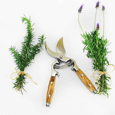 Wooden Handle Pruning Shears
