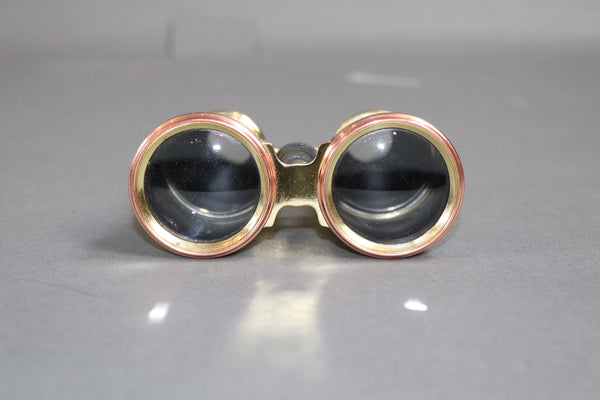 Pair of Brass Marine Binoculars