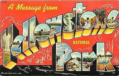 Large Letter Greetings from Yellowstone National Park 1940 Vintage Postcard