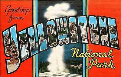 Large Letter Greetings from Yellowstone National Park 1940 Old Faithful Postcard