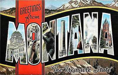Montana MT 1950s Large Letter Greetings from Montana The Treasure State Postcard