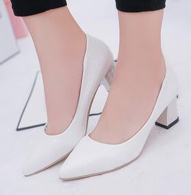 Thick Heels Women's Slip On Pointed Toe Snake Skin