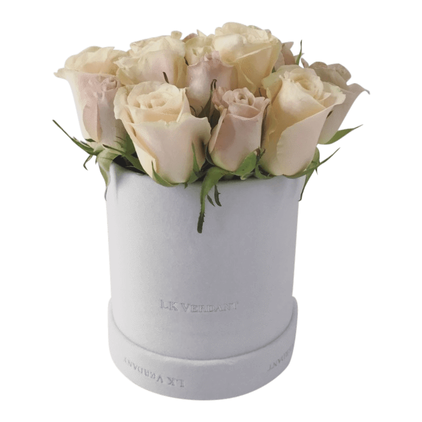 The Vogue - Shop for Flowers and Forever Roses - LK VERDANT