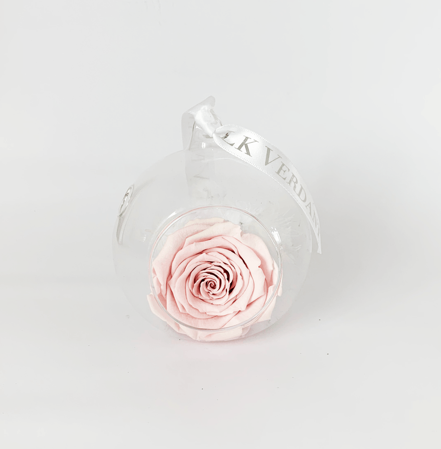 The Always Pink Forever Rose - Shop for Flowers and Forever Roses - LK VERDANT