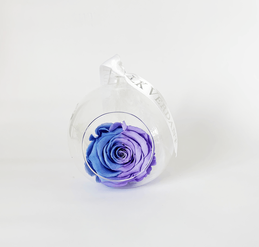 The Always Ombre III Forever Rose - Shop for Flowers and Forever Roses - LK VERDANT