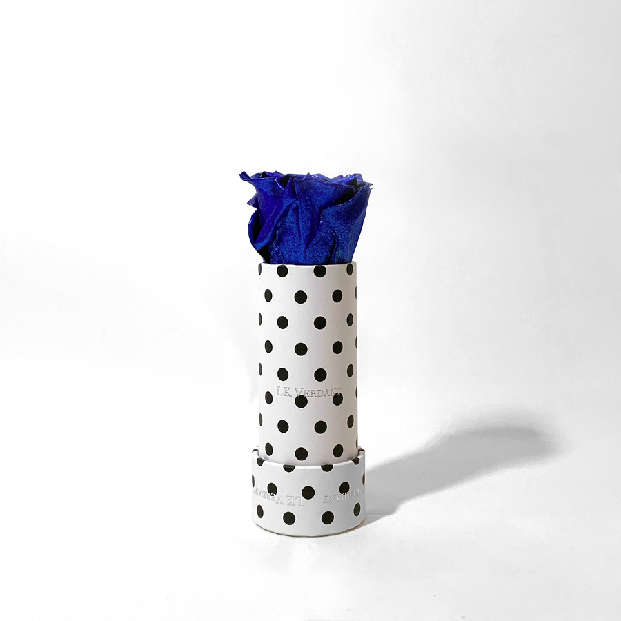 The Candy Polka Metallic Blue Forever Rose - Shop for Flowers and Forever Roses - LK VERDANT