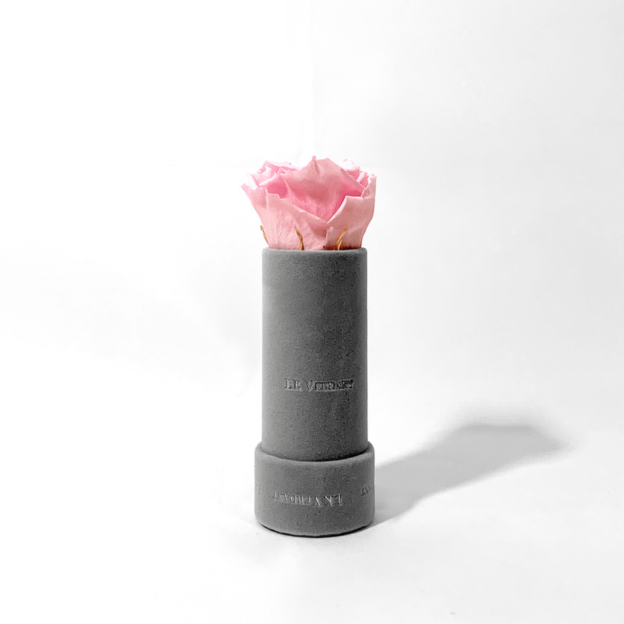 The Candy Grey Pink Forever Rose - Shop for Flowers and Forever Roses - LK VERDANT