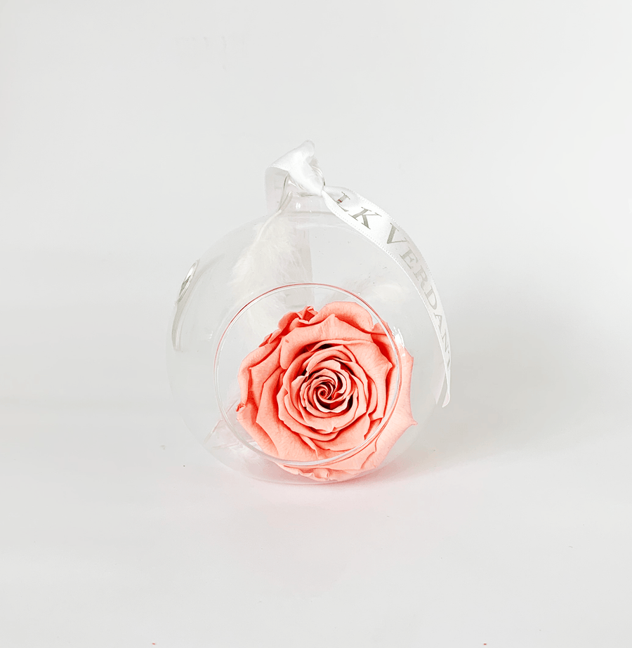 The Always Coral Rose Forever Rose - Shop for Flowers and Forever Roses - LK VERDANT