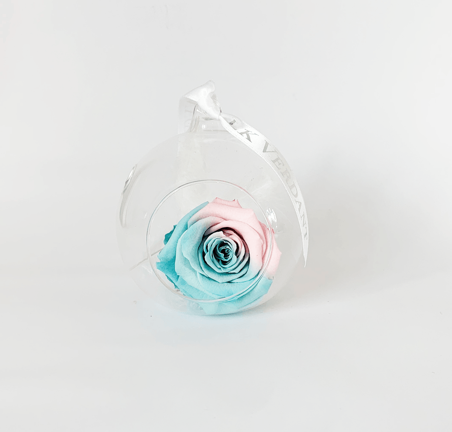 The Always Ombre Forever Rose - Shop for Flowers and Forever Roses - LK VERDANT