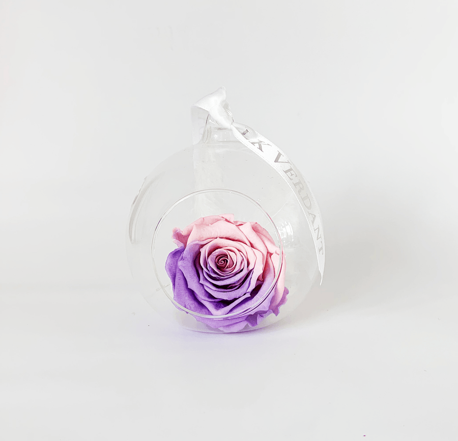 The Always Ombre II Forever Rose - Shop for Flowers and Forever Roses - LK VERDANT