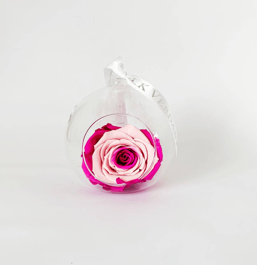 The Always Pink Swirl Forever Rose - Shop for Flowers and Forever Roses - LK VERDANT