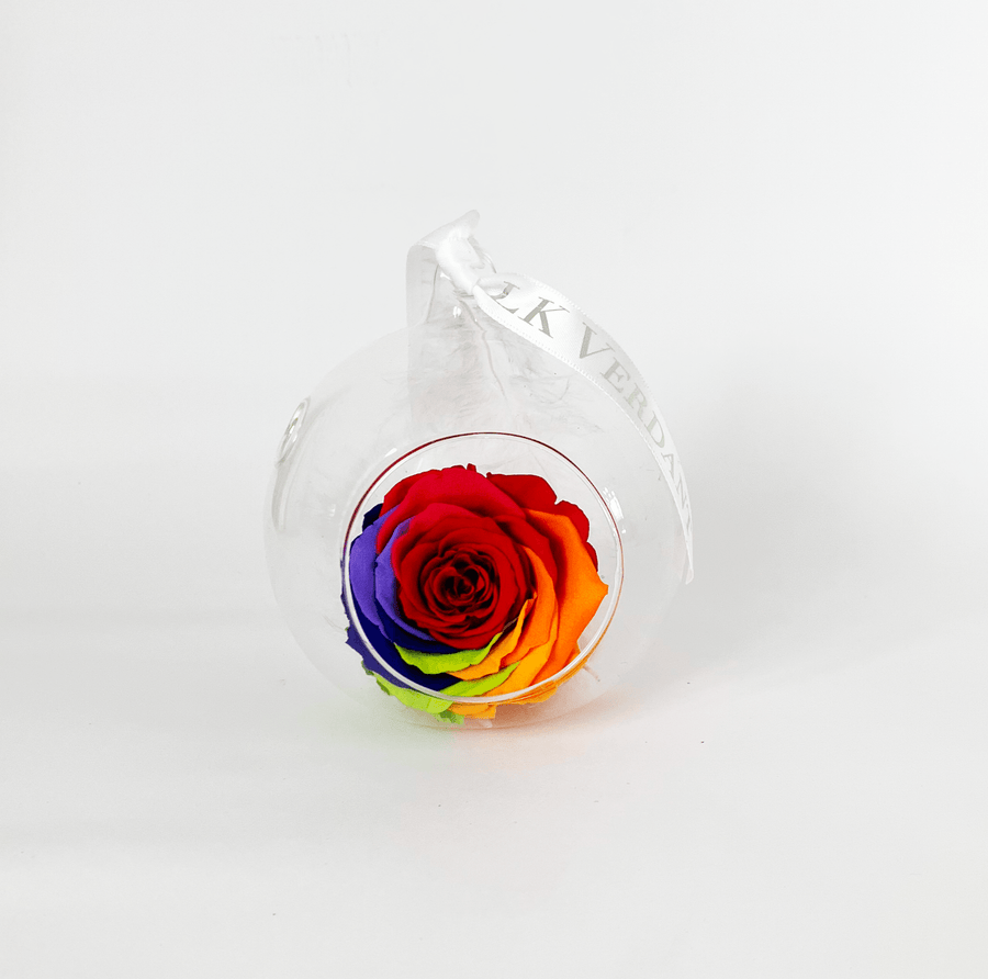 The Always Rainbow Forever Rose - Shop for Flowers and Forever Roses - LK VERDANT