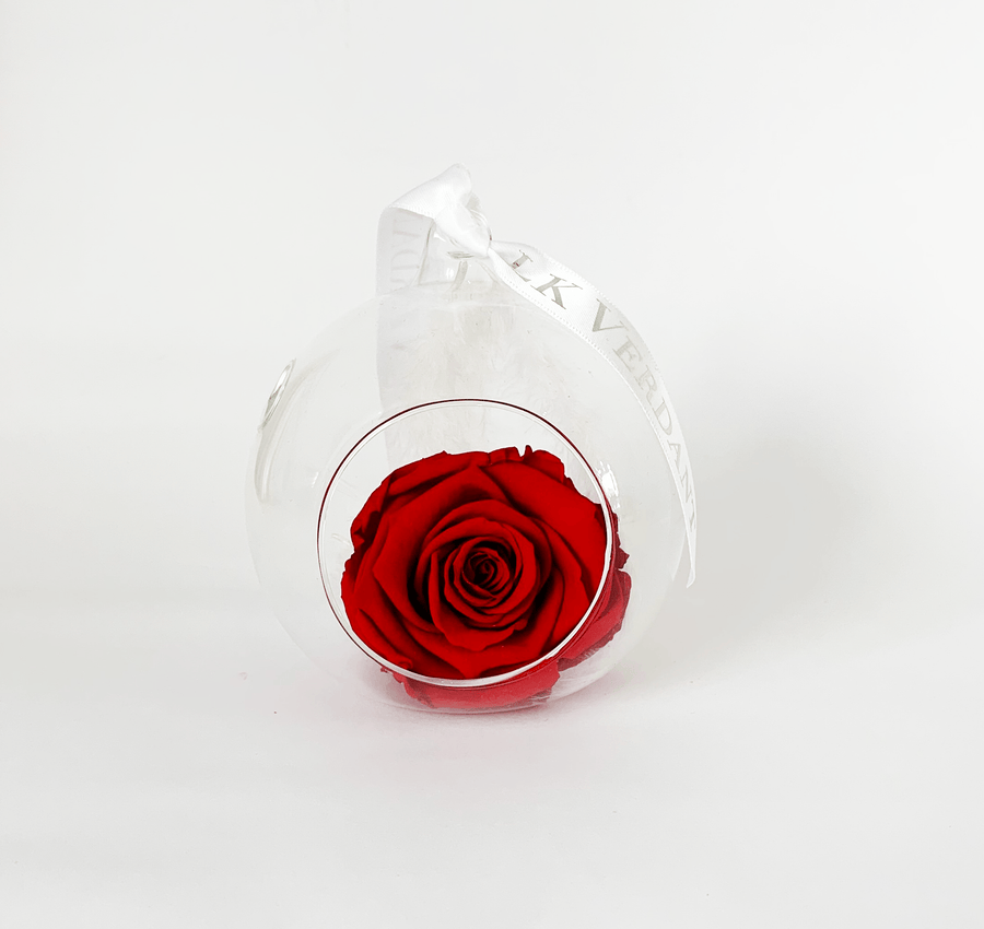 The Always Red Forever Rose - Shop for Flowers and Forever Roses - LK VERDANT